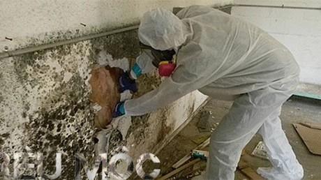 Các phương pháp phòng chống nấm mốc cho tường nhà